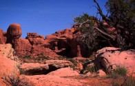Beehive Stories: Arches National Park