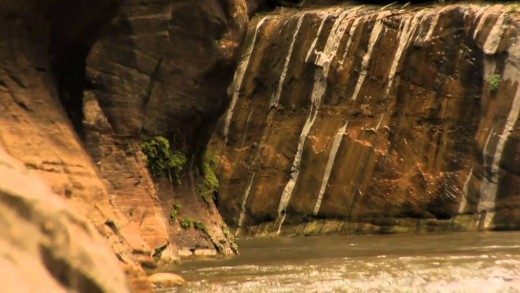 Beehive Stories: Zion National Park